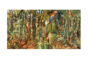 An Illustration of Abundant Wildlife in a South American Rain Forest by Barron Storey