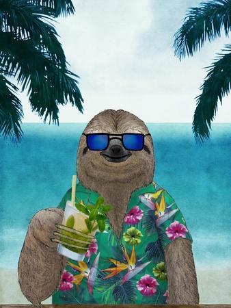 Sloth on Summer Holidays