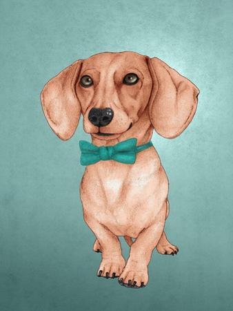The Wiener Dog by Barruf