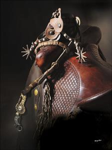 Bits, Bridles and Spurs by Barry Hart