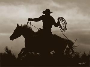 Midnight Rider by Barry Hart