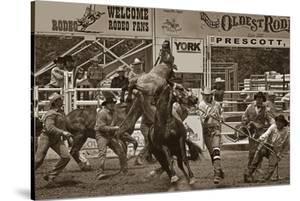 Rodeo Daze by Barry Hart