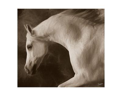 by Barry Hart Horse Dog Landscape Poster 13x19 color WESTERN ART PRINT Oasis