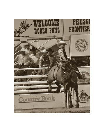 Barry Hart Branding At Lost Canyon Western Horse Cowboy Print Poster 19x13