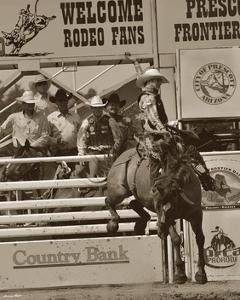 The Ballet of the Rodeo by Barry Hart
