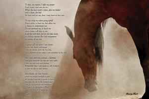 The Horse's Prayer by Barry Hart