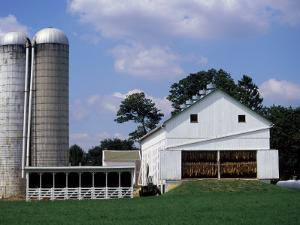Amish Farm with Tobacco Dried in Barn, PA by Barry Winiker
