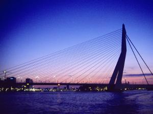 Erasmus Bridge, Erasmusbrug, Rotterdam by Barry Winiker