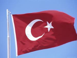 Flag of Turkey by Barry Winiker