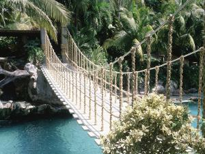 Rope Bridge, Acapulco, Mexico by Barry Winiker