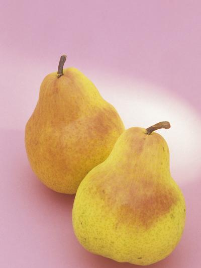 Bartlett Pears (Pyrus Communis)-Wally Eberhart-Photographic Print