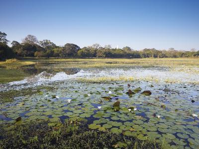 Basawakkulama Lake, Anuradhapura, UNESCO World Heritage Site, North Central Province, Sri Lanka-Ian Trower-Photographic Print