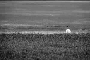 Baseball in the Field