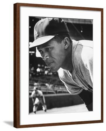 Baseball Player for Los Angeles Dodgers Maury Wills-Francis Miller-Framed Premium Photographic Print