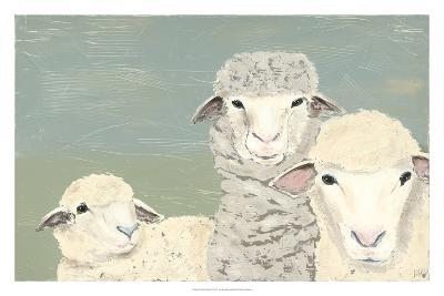 Bashful Sheep II-Jade Reynolds-Art Print