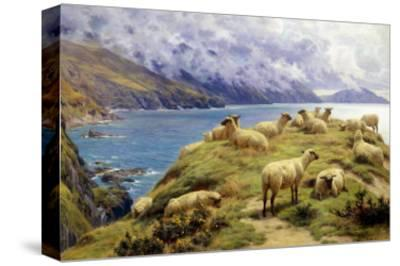 Sheep Reposing, Dalby Bay, Isle of Man