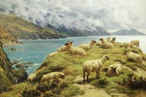 Sheep Reposing, Dalby Bay, Isle of Man by Basil Bradley