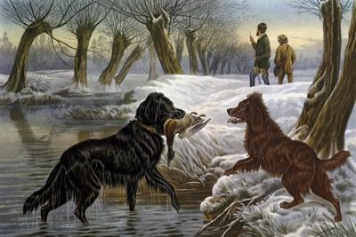 Wild Duck Hunting, 1880