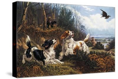 Woodcock Hunting, 1880