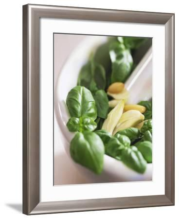 Basil, Garlic and Pine Nuts (Ingredients for Pesto)--Framed Photographic Print