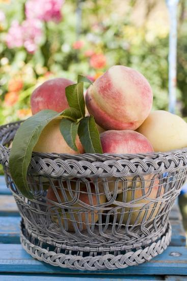 Basket of Fresh Peaches on a Garden Table-Eising Studio - Food Photo and Video-Photographic Print