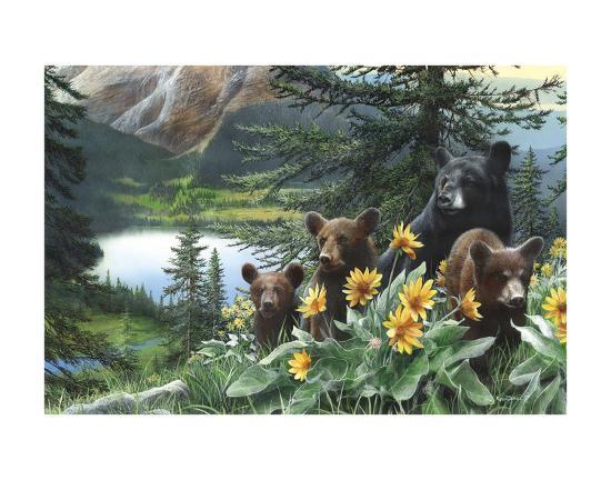 Basking in the Balsams-Kevin Daniel-Art Print