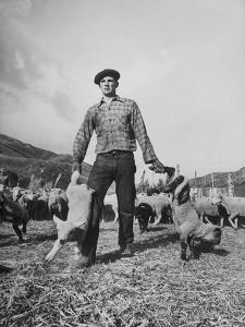 Basque Shepherder Bertrand Borda Doing What He Does Best