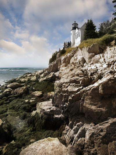 Bass Harbor Head Lighthouse & Foothill-Monte Nagler-Photographic Print