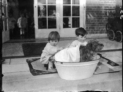 Bathing the Dog--Photographic Print