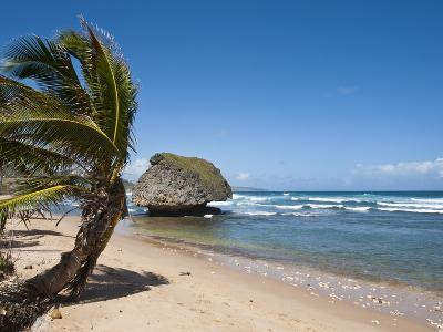 Bathsheba Beach, Barbados, Windward Islands, West Indies, Caribbean, Central America-Michael DeFreitas-Photographic Print