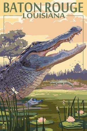 https://imgc.artprintimages.com/img/print/baton-rouge-louisiana-alligator-scene_u-l-q1gpt5n0.jpg?p=0