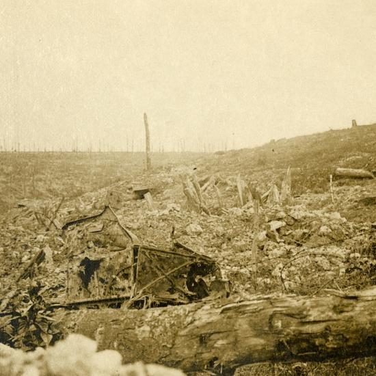 Battlefield, Bezonvaux, Verdun, northern France, c1914-c1918-Unknown-Photographic Print