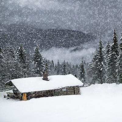 Bavarian Winter'S Tale II-Melanie Viola-Art Print
