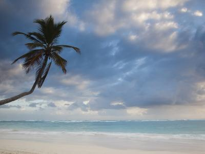 Bavaro Beach Palms at Dawn, Bavaro, Punta Cana Region, Dominican Republic-Walter Bibikow-Photographic Print