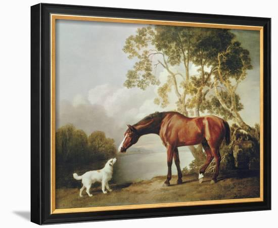 Bay Horse and White Dog-George Stubbs-Framed Giclee Print