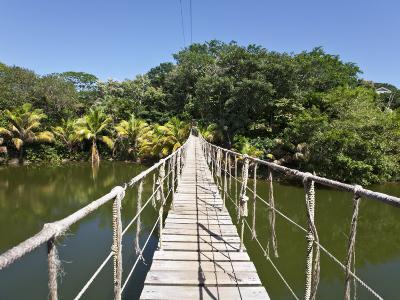 Bay Islands, Roatan, Gumba Limba Park, Honduras-Jane Sweeney-Photographic Print