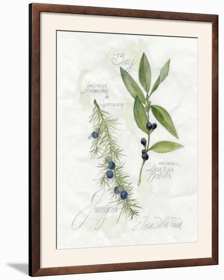Bay Leaf and Juniper-Elissa Della-piana-Framed Photographic Print