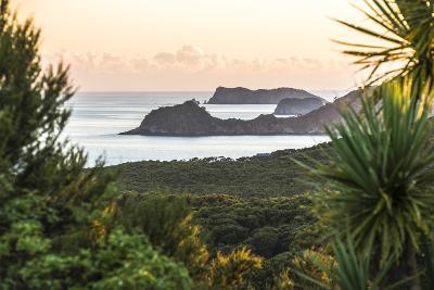 Bay of Islands Coastline at Sunrise, Seen from Russell, Northland Region, North Island, New Zealand-Matthew Williams-Ellis-Photographic Print