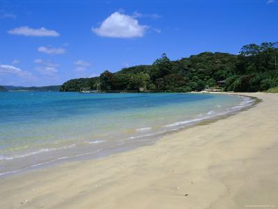 Bay of Islands, Northland, North Island, New Zealand, Pacific-Neale Clarke-Photographic Print