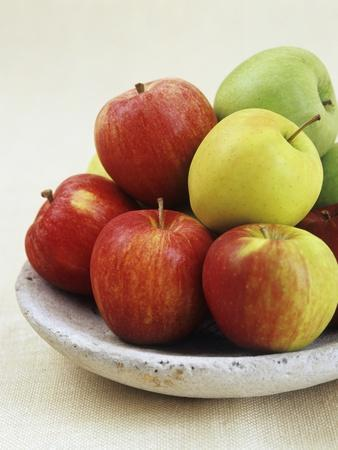 Various Apples on a Stone Plate
