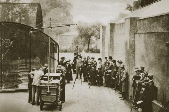 BBC broadcast from the aviary at London Zoo, 20th century-Unknown-Photographic Print