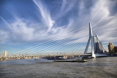 Erasmus Bridge in Rotterdam on the Nieuve-Maas River, Rotterdam