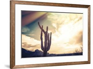 Desert Scene in Arizona as Sen Set - Saguaro Cactus Tree in Foreground by BCFC