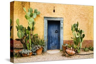 Old Doorway Surrounded by Cactus Plants and Stucco Wall.
