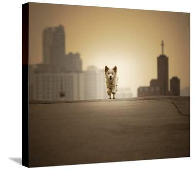 Be With You-Biduri Chang-Hwan Park-Stretched Canvas Print
