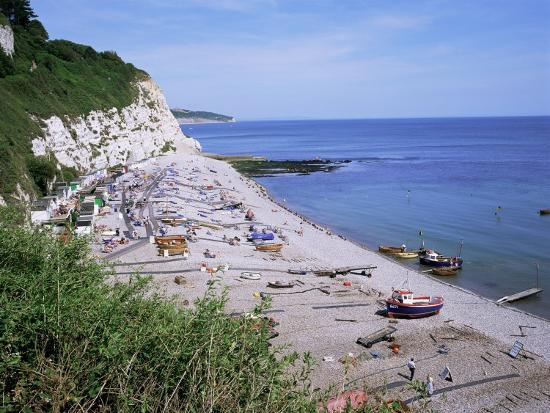 Beach and Cliffs, Beer, Devon, England, United Kingdom-Roy Rainford-Photographic Print