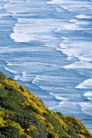 Beach and Coastline on the Pacific Ocean Near Florence, Oregon-Sergio Ballivian-Photographic Print
