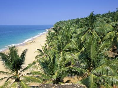 Beach and Coconut Palms, Kovalam Beach, Kerala State, India-Gavin Hellier-Photographic Print