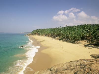 Beach and Coconut Palms, Kovalam, Kerala State, India, Asia-Gavin Hellier-Photographic Print