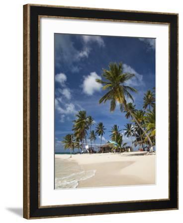 Beach and Palm Trees on Dog Island in the San Blas Islands, Panama, Central America-Donald Nausbaum-Framed Photographic Print